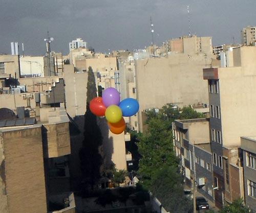 روز مبارزه با ھمجنس گراستیزی و تراجنسی ستیزی در ایران 13